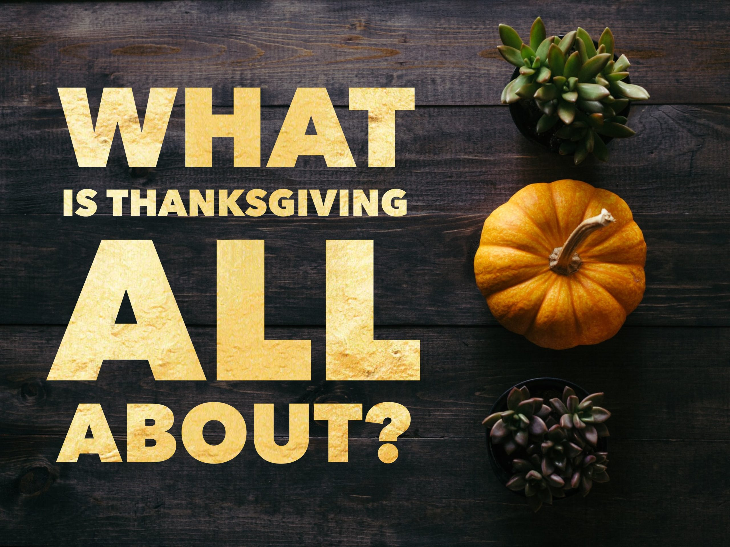 What is Thanksgiving All About?