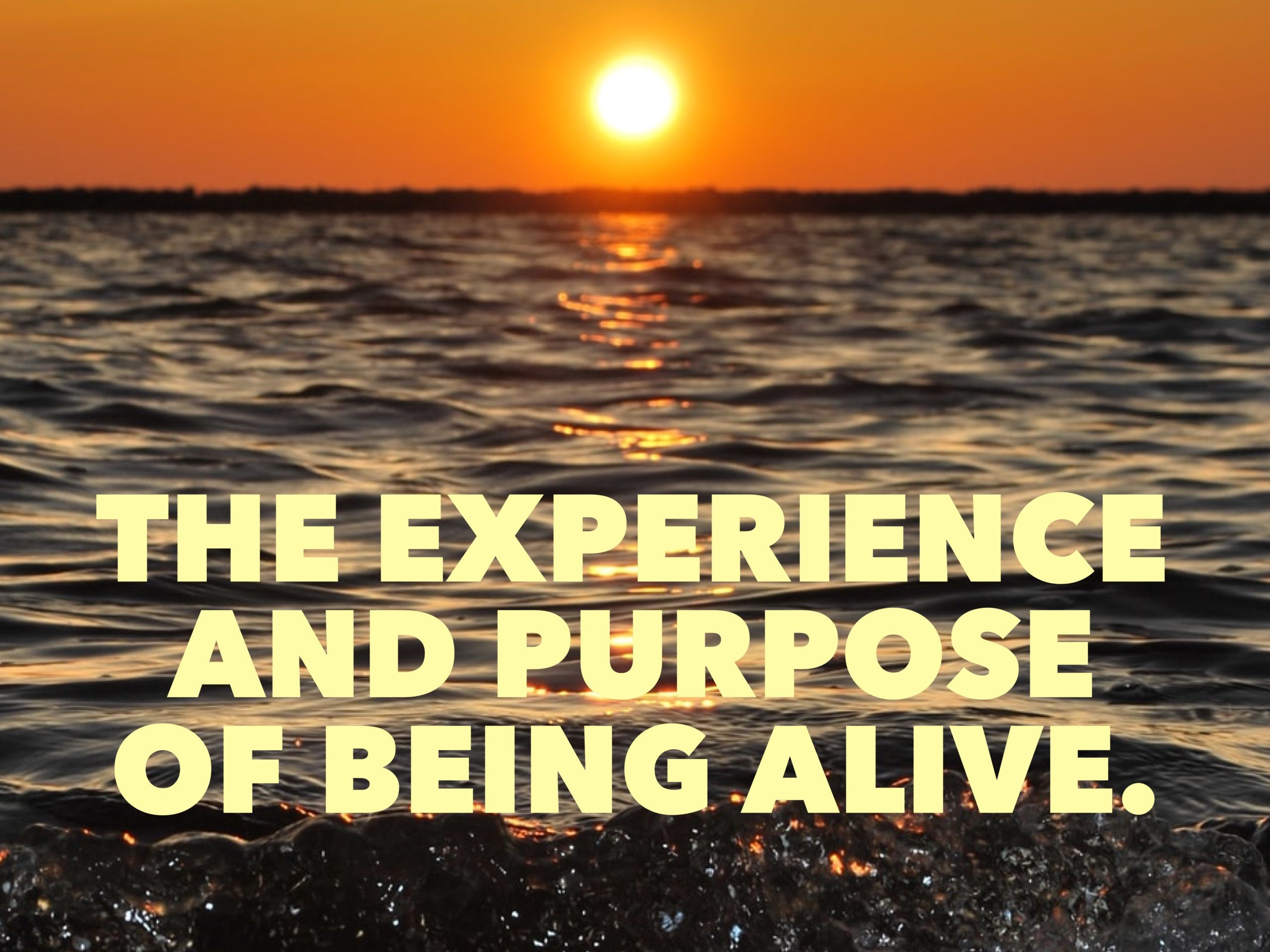 The Experience and Purpose of Being Alive